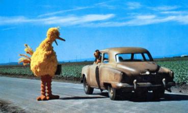 big bird hitchhike